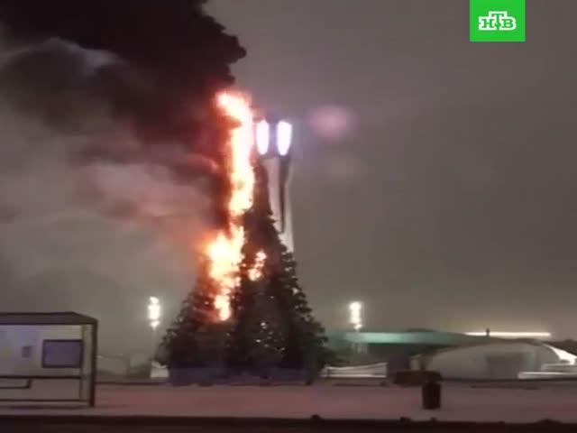 В Астане сгорела главная новогодняя елка Казахстана
