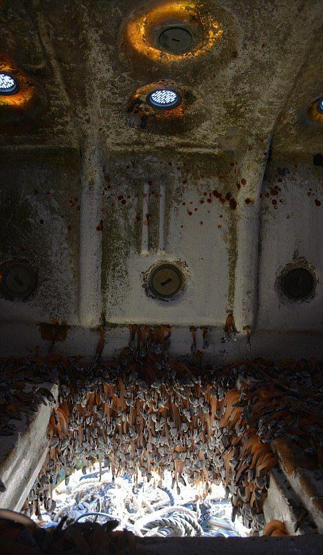 В США на берег прибило корабль-призрак с деликатесами на борту (5 фото)