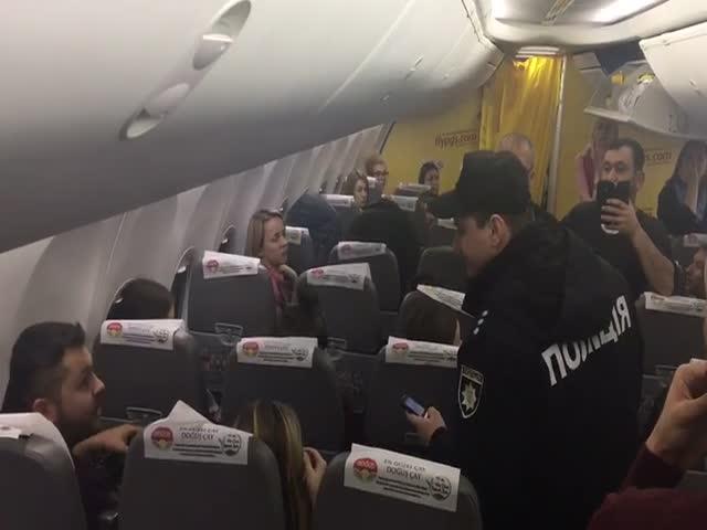 Рейс Киев - Анкара задержала на два часа из-за пассажира с семью котами