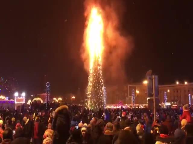 В новогоднюю ночь в Южно-Сахалинске сгорела главная елка города