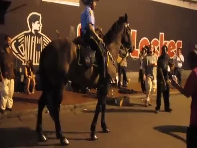 Танцующий конь из конной полиции США