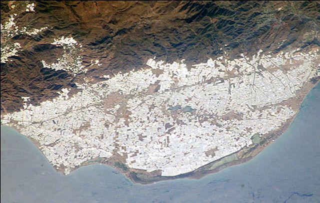Тепличная Испания (5 фото)