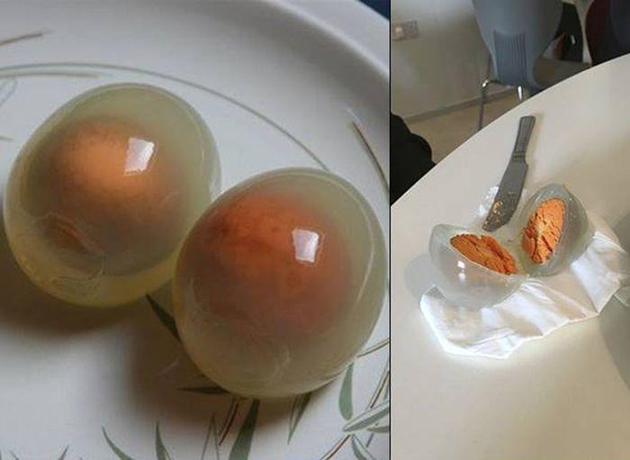 Вот как выглядят варенные пингвиньи яйца (4 фото)