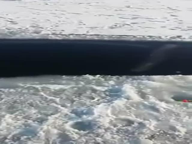 Откол льдины с рыбаками во Владивостоке
