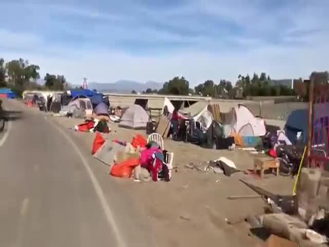 Бездомные Калифорнии