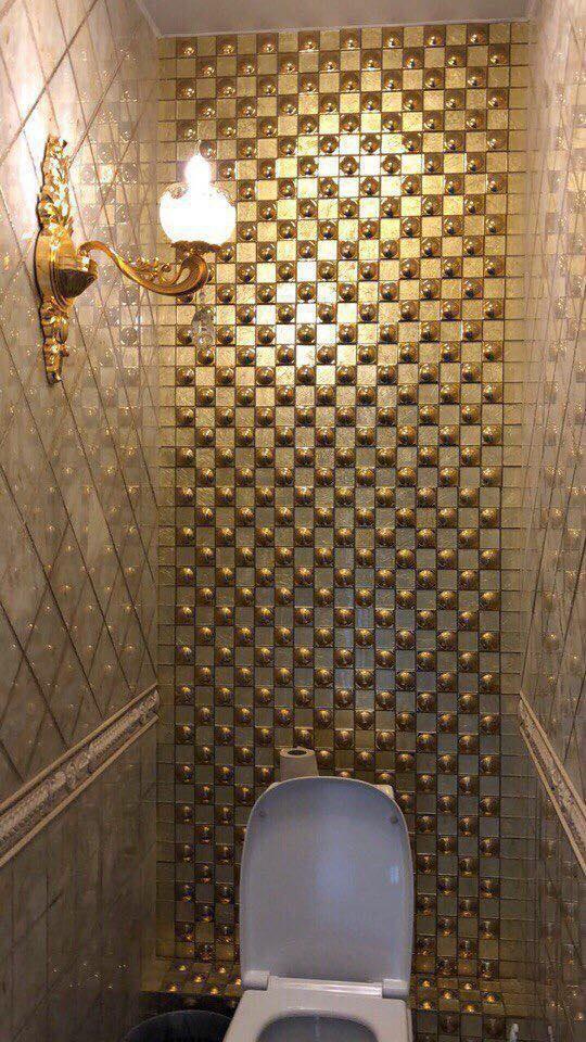 В Уральском государственном экономическом университете появился ВИП-туалет (4 фото)