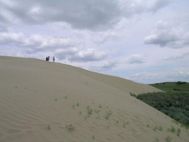 Песчаные дюны в канадской тайге (19 фото)