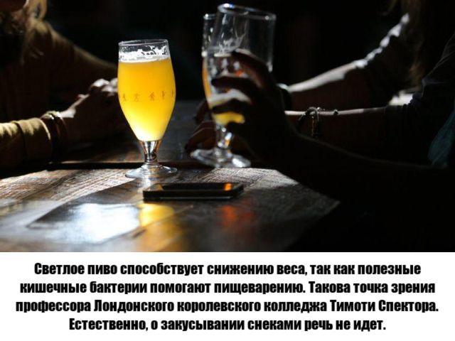Положительные свойства пива (8 фото)