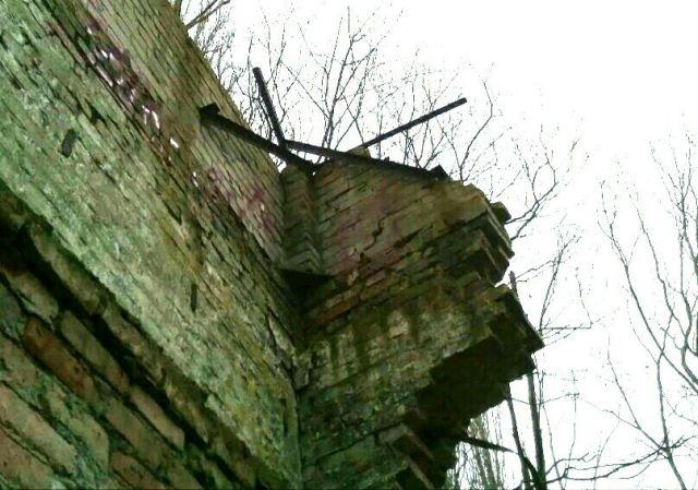 В лесу обнаружили уцелевший фрагмент Берлинской стены (7 фото + видео)