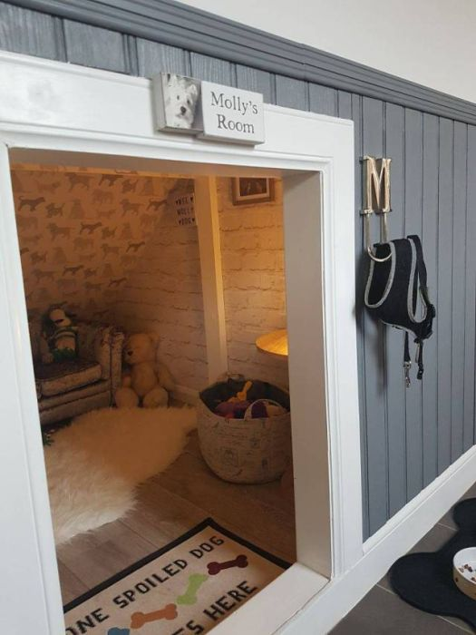 Уютная комната для любимой собаки (23 фото)