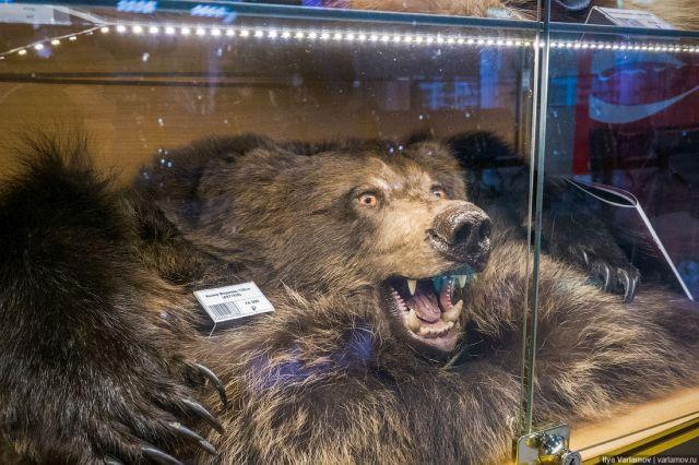 Необычные сувениры в аэропорту Кирова (8 фото)