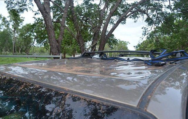 Туристы провели ночь на крыше авто, спасаясь от крокодилов (4 фото)