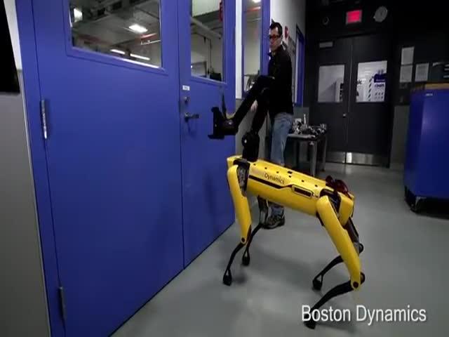 Находчивая робототехника