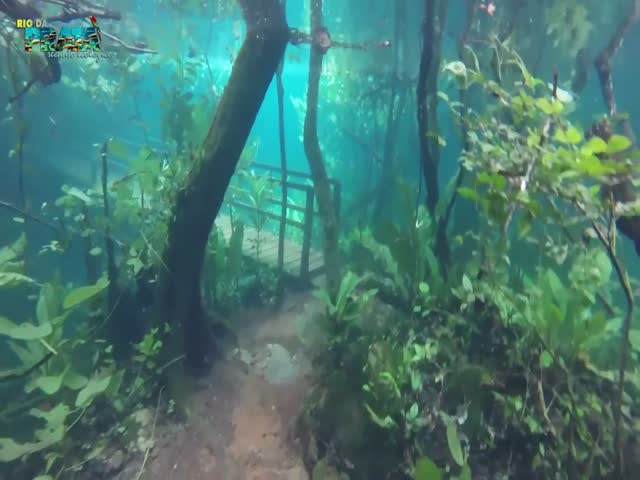 Затопленная местность превратилась в изумительное место для съемки