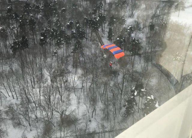 Московский бейсджампер застрял на дереве (3 фото)