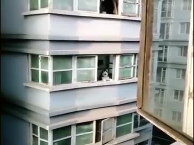 Сосед, выходи! – Выхожуууу!