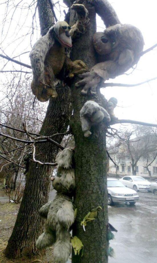 В Ростове на деревья украсили игрушками (5 фото)