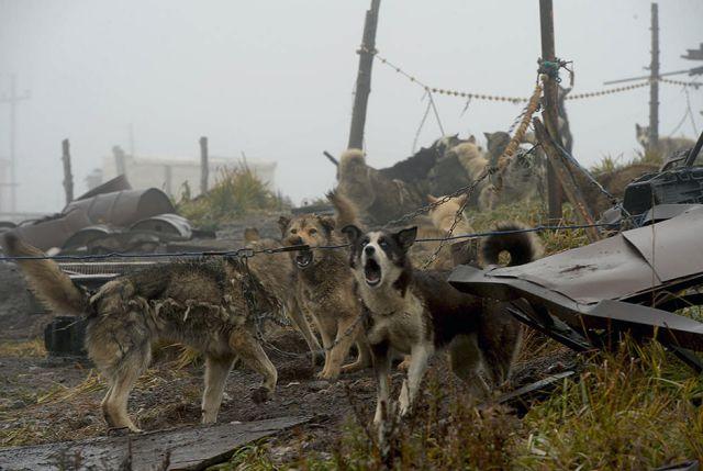Вековые традиции Чукотки (17 фото)