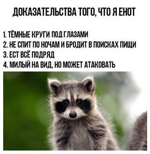 С юмором по жизни - Страница 23 Podborka_vecher_25