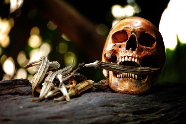 Мировые традиции захоронения (6 фото)