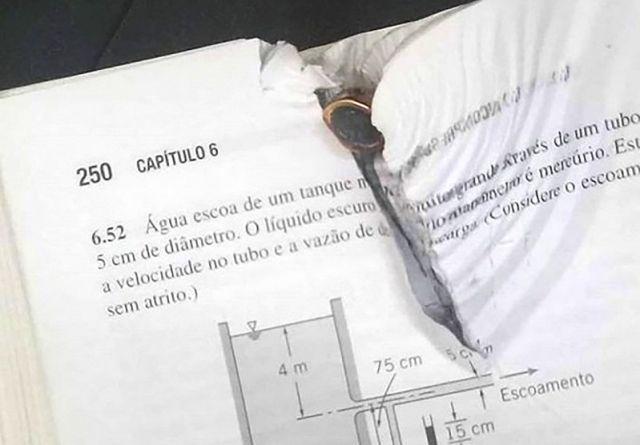 Учебник по гидромеханике спас жизнь бразильскому студенту (2 фото)