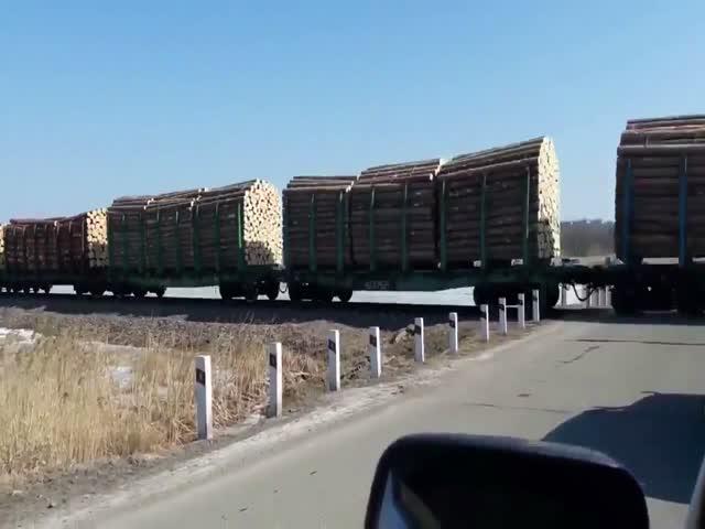 Вывоз российского леса в Китай