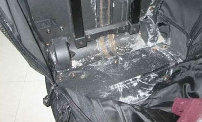 Находка стоимостью 1 млн долларов в обычном чемодане (3 фото)