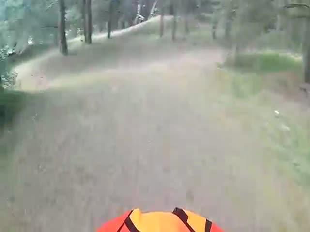 В лесу отдыхающие напали на мотоциклистов