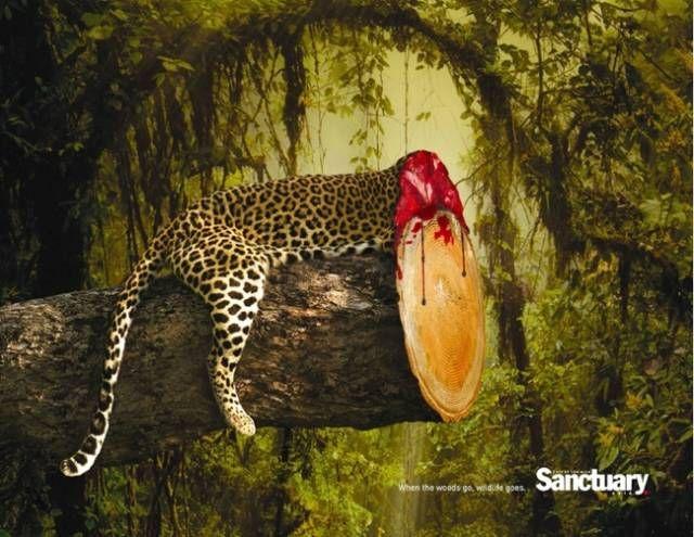 Отличные примеры социальной рекламы (29 фото)
