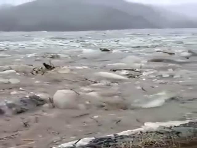 Ледоход на реке Ануй