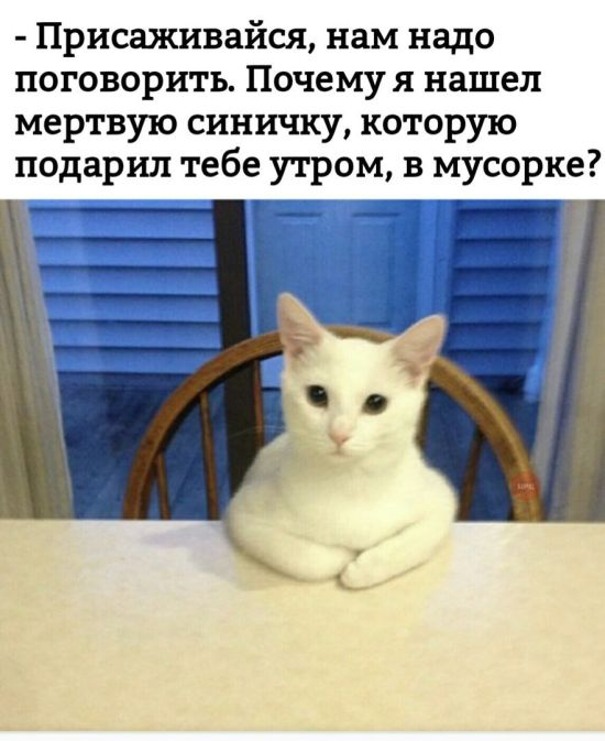 podborka_vecher_26.jpg