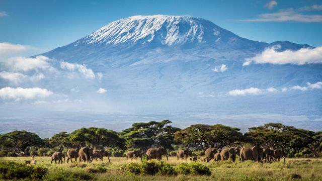 7-летний индийский альпинист покорил высочайшую точку Африки - гору Килиманджаро (4 фото)
