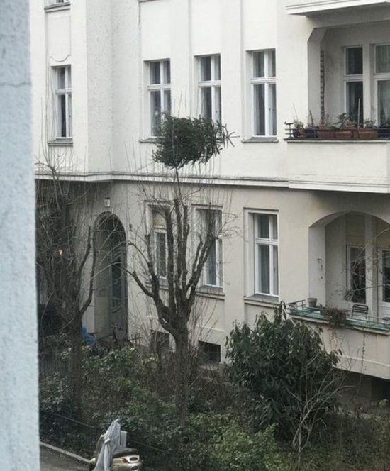 Соседские приколы (26 фото)