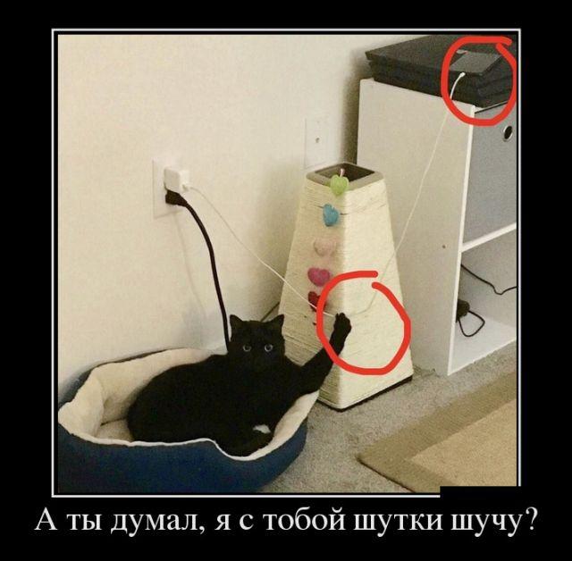 demotivatory_29.jpg