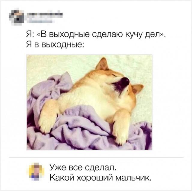 Смешные комментарии из соцсетей (20 картинок)
