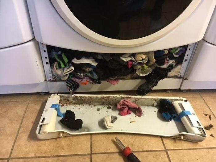 Найдена причина неполадки стиральной машины (5 фото)