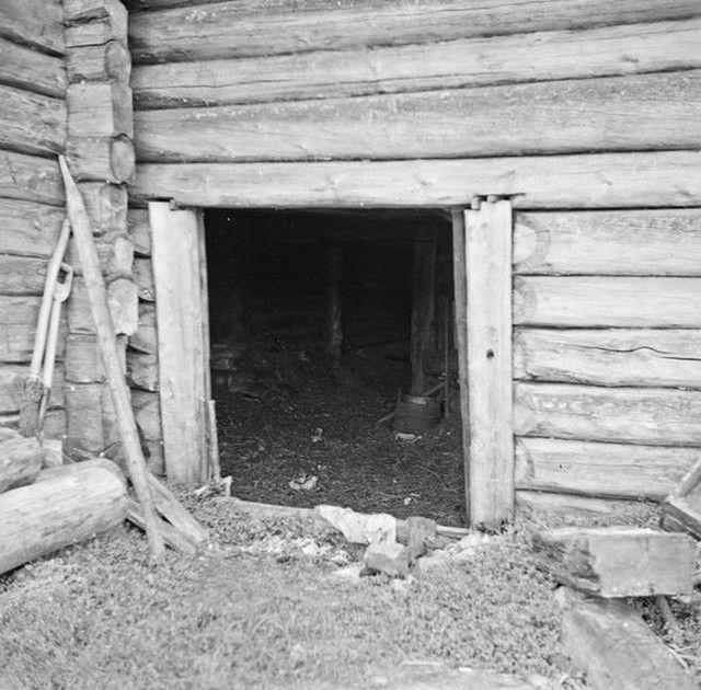 Типичная карельская изба (21 фото)