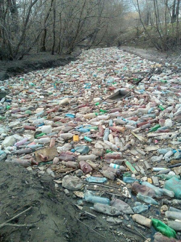 «Бутылочная река» в Барнауле (3 фото)