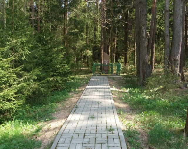 Братская могила героев ВОВ в белорусском лесу (3 фото)