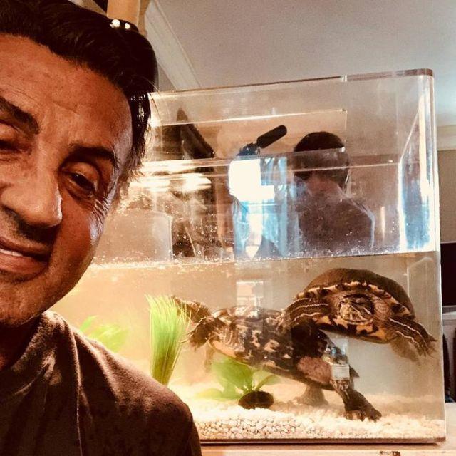 Сильвестр Сталлоне и его старые друзья (3 фото)