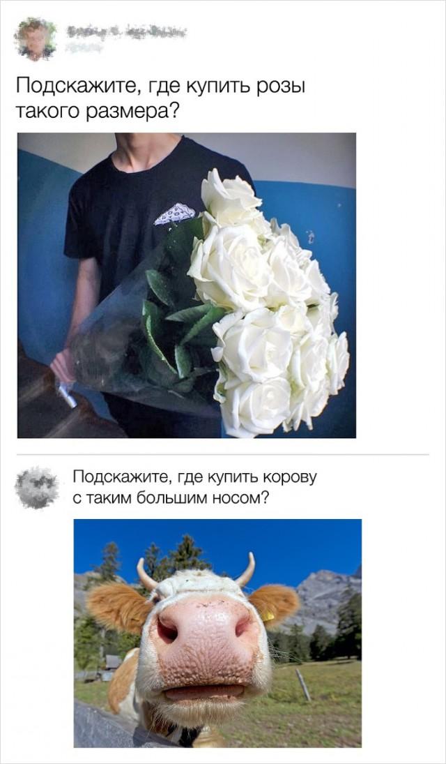 Юмор из социальных сетей (22 скриншота)