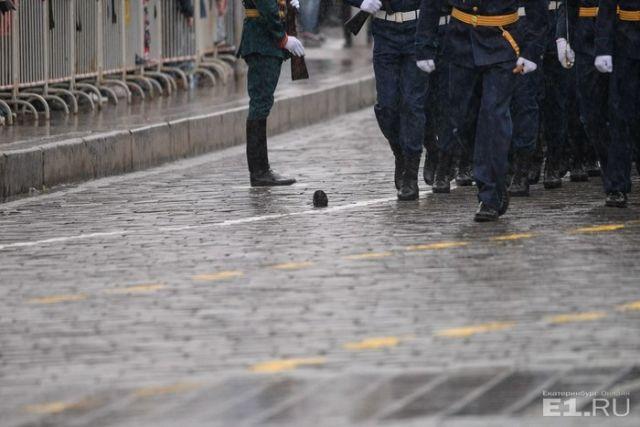 В Екатеринбурге участница Парада Победы лишилась обуви (3 фото)