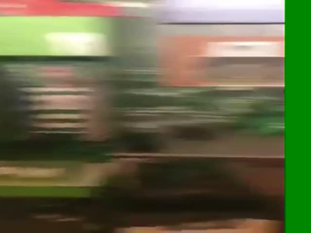 Недовольные игрой фанаты напали на игроков ФК «Спортинг»