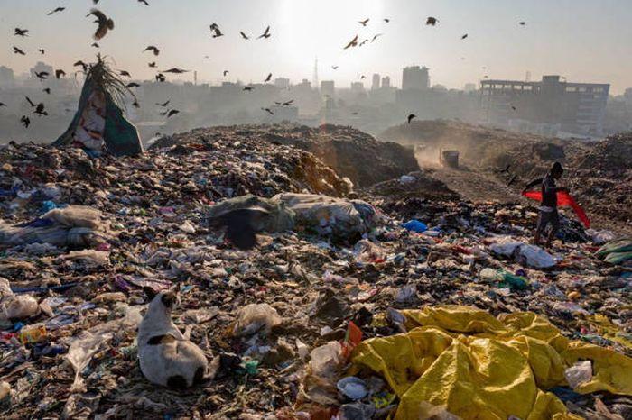 Мир в пластике (16 фото)