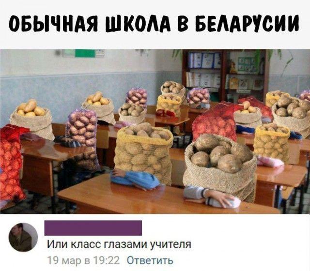 Подборка приколов из социальных сетей (26 скриншотов)