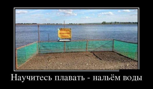 http://cdn.trinixy.ru/pics5/20180521/demotivatory_20.jpg