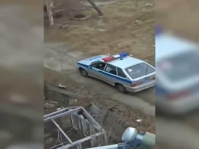 В Печоре полицейские прогнали медведя
