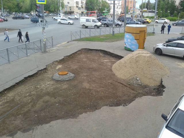 Власти решили проблему с газоном (10 фото)