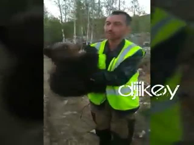 Вахтовики поймали медвежонка