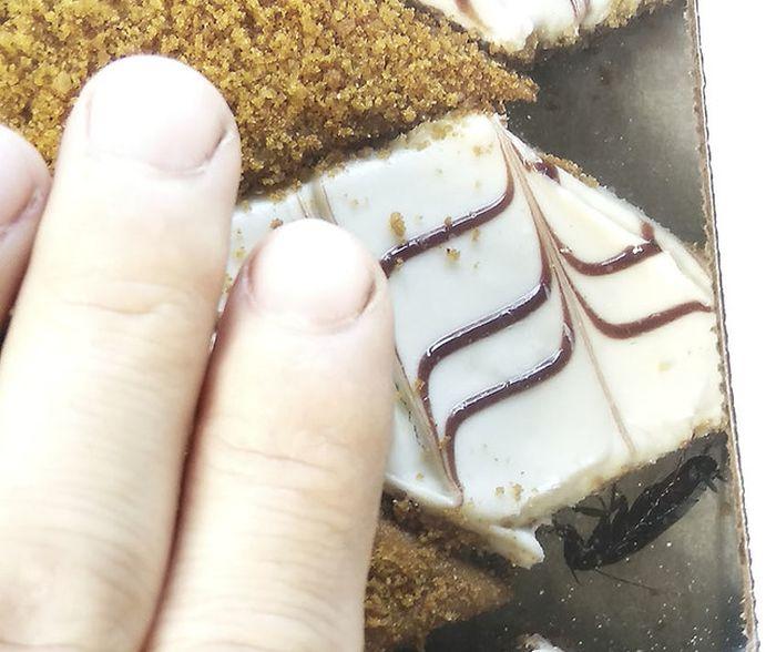 Не самый аппетитный торт (4 фото)
